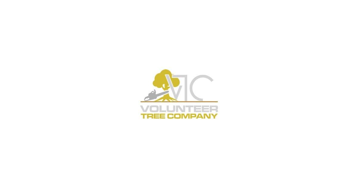 Logo - VTC